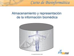 Almacenamiento y representación de la información biomédica