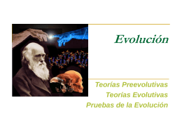 CLASE 13 - EVOLUCION