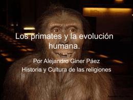 Los primates y la evolución humana