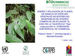 Diseño y aplicación de planes de manejo de especies vegetales