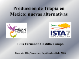 Produccion de Tilapia en Mexico