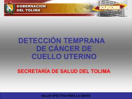 Catalina PRE