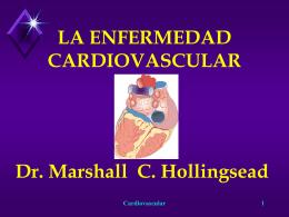 150801 enfermedad cardiovascular