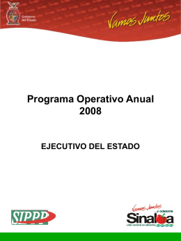 Programa Operativo Anual 2008 (POA)
