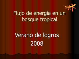 Flujo de Energia en un Ecosistema de Bosque Tropical