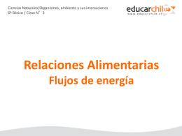 RELACIONES ALIMENTACION Y FLUJO DE ENERGÍA