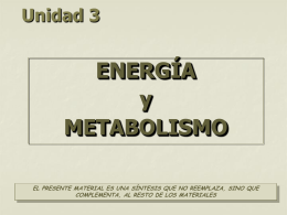 Power Point - biomilenio.net