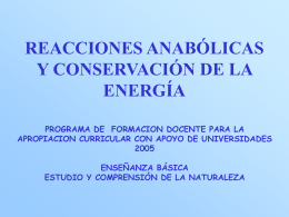 REACCIONES ANABÓLICAS Y CONSERVACIÓN DE LA ENERGÍA