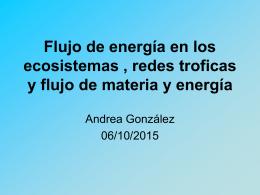 Flujo de energía en los ecosistemas , redes troficas y flujo de