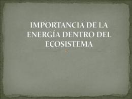 Importancia de la energía dentro del ecosistema SALMA