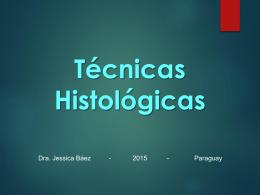 Técnicas Histológicas