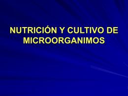 nutricion06