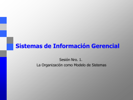 Organizaciones e Información