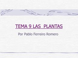 TEMA 9 LAS PLANTAS