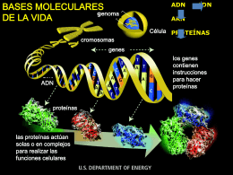 Presentacion_biotecnologia2