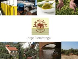 Proyectos de Inversión: Olivares San Nicolás