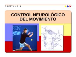 Control Neurológico del Movimiento