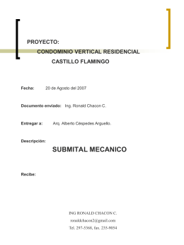 SUBMITAL CASTILLO FLAMINGO