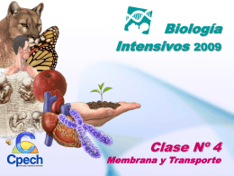 Biología Intensivos 2009 Clase Nº 4 Membrana y Transporte