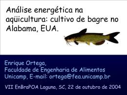 Bagre - Unicamp
