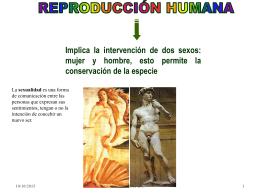 sexualidad - biologiamedia
