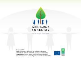 6. Experiencia CFV FLEGT - Proyecto Gobernanza Forestal