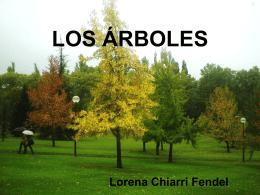 Lorena Chiarri. Tema 7. Árbol (4709888)