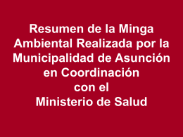 Resumen Minga - Municipalidad de Asunción