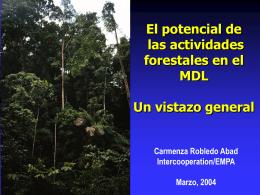 Mecanismo de Desarrollo Limpio y el sector forestal Una alternativa