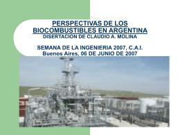Perspectivas de los biocombustibles en Argentina.