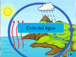 Ciclo del agua - DPS World Languages