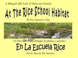 En el hábitat de La Escuela Rice.