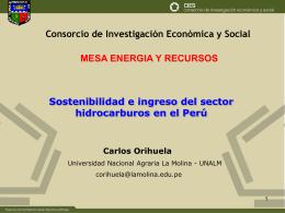 Power Point - Consorcio de Investigación Económica y Social