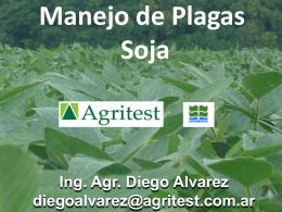 Informes 21 febrero, 2011 Plagas En Soja – Diego