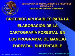 ELABORACIÓN DE LA CARTOGRAFÍA FORESTAL