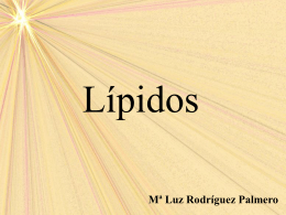 LÍPIDOS - Materiales TIC de Lourdes Luengo