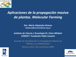 Posibles aplicaciones de la propagación masiva de plantas
