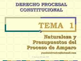 (3) Doble carácter de los derechos procesos constitucionales
