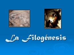 Esquema - La Filogénesis