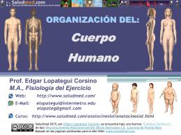 P1 PPT U1-02: Organización del Cuerpo Humano