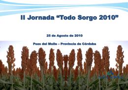 Sorgo 2010