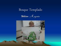 Bosque Templado - WIKIwithSraGonzalez