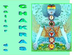 ¿Qué es el taller de chakras?