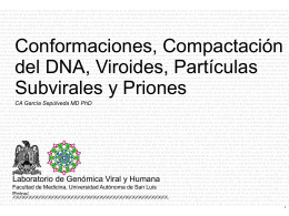 Cromosoma - Universidad Autónoma de San Luis Potosí.