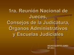 1ra. Reunión Nacional de Jueces, Consejos de la Judicatura