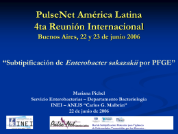 PulseNet América Latina 4ta Reunión Internacional Buenos Aires