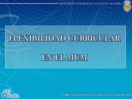 Flexibilidad del Modelo Universitario Minerva