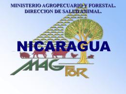 0008Presentacion Nicaragua2