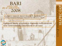 041 - V.Ciuffetelli, A.R.Vitale, et al.