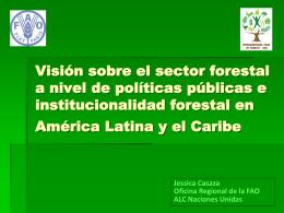 Visión sobre el sector forestal a nivel de políticas públicas